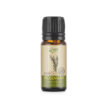Buy Rosemary Essential Oil